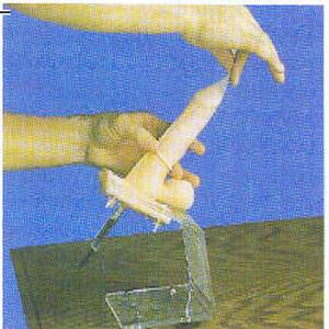 男性避孕套练习模型GD/F5M